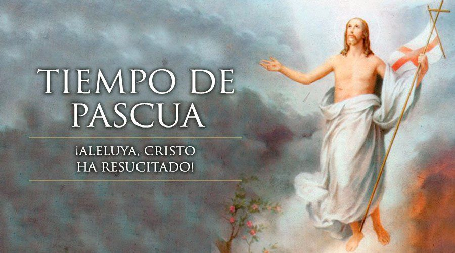 Permalink to: Tiempo Pascual
